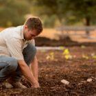 Poszkodowani rolnicy (Żywioł)